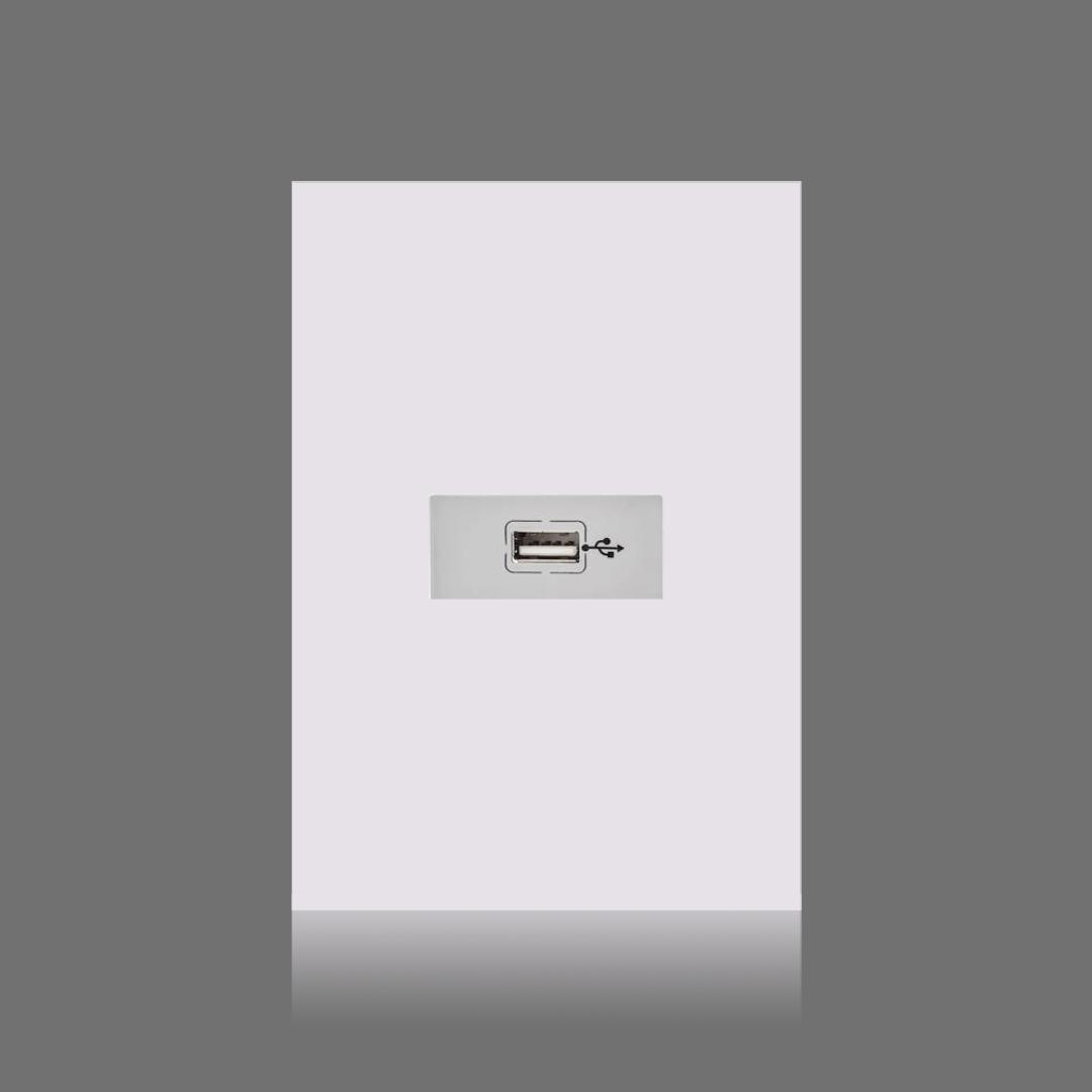 USB dados